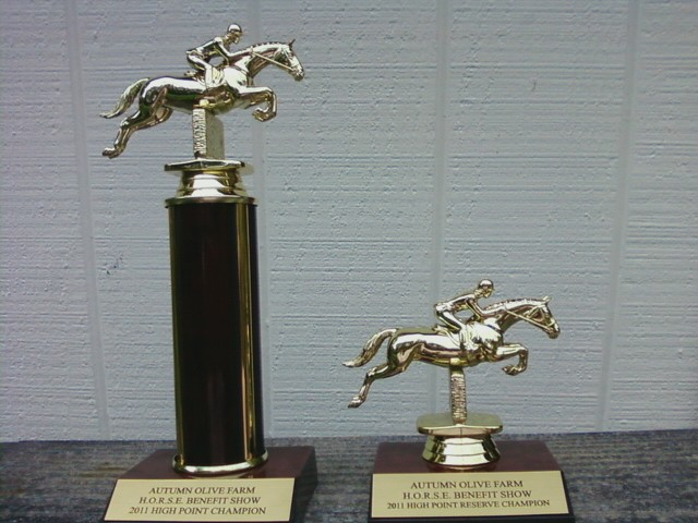 equestrian trophies